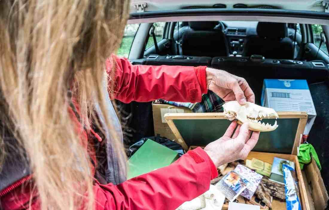 WIlderness Exchange Programme Kalkalpen 15.jpg - © European Wilderness Society CC BY-NC-ND 4.0