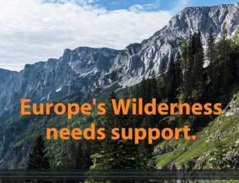 Wilderness video: Help us protect it!