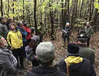 Natura 2000 in Beech Forest Workshop