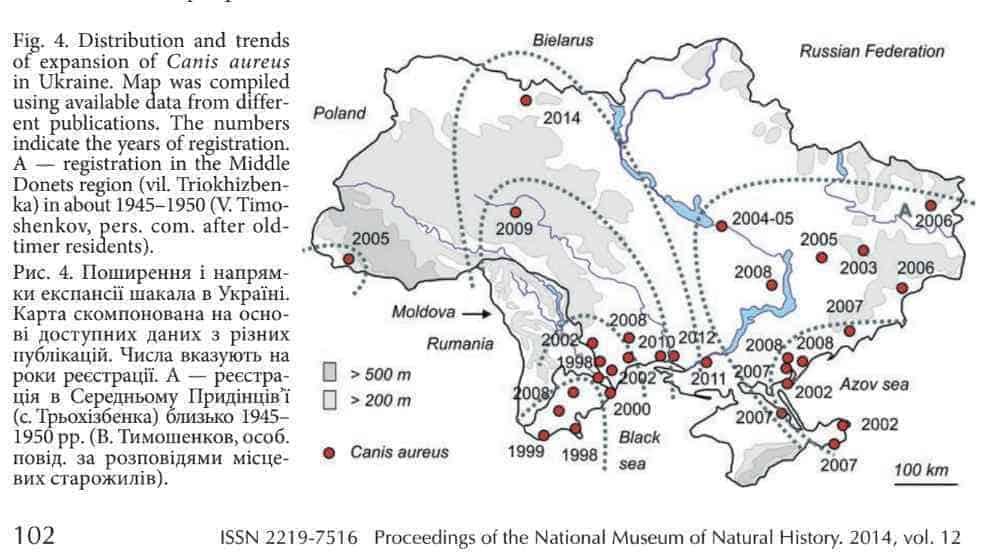 Golden Jackal expansion into the Ukraine