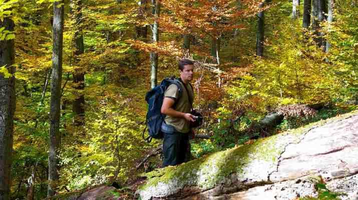 Slovakia 0164.JPG - European Wilderness Society - CC NonCommercial-NoDerivates 4.0 International