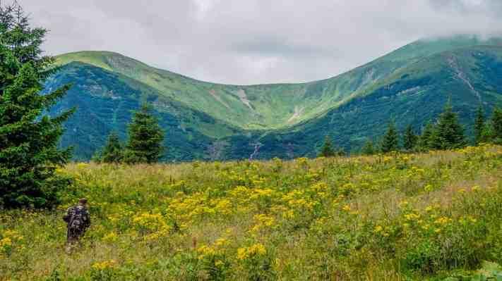 Carpathian National Nature Park - 00091.JPG - © European Wilderness Society CC BY-NC-ND 4.0