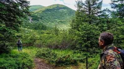 Carpathian National Park 1262