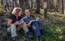 Kalkalpen Wilderness 1000380