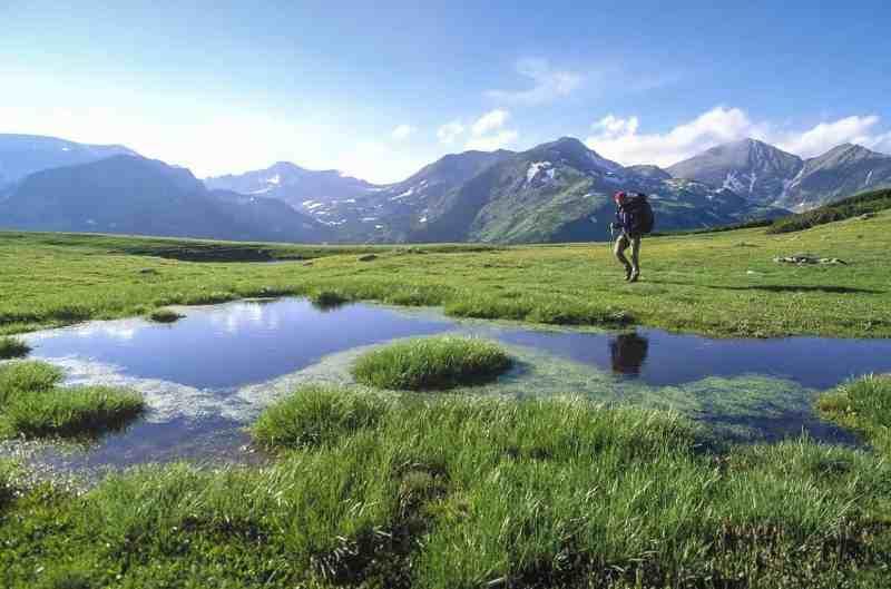 Retezat Wilderness - © All rights reserved