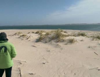 WILDIsland Amrum North Sea 01