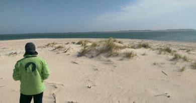 WILDIsland Amrum North Sea 01