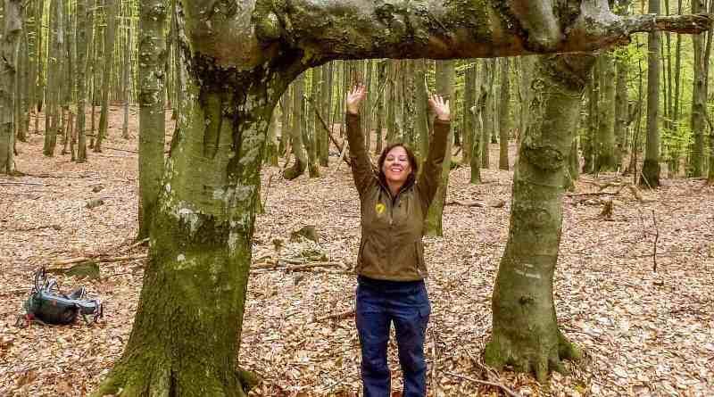 Zacharovanyy Kray WIlderness Exchange 24.jpg - © European Wilderness Society CC BY-NC-ND 4.0
