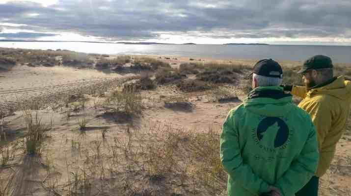 Bothian Sea Wilderness