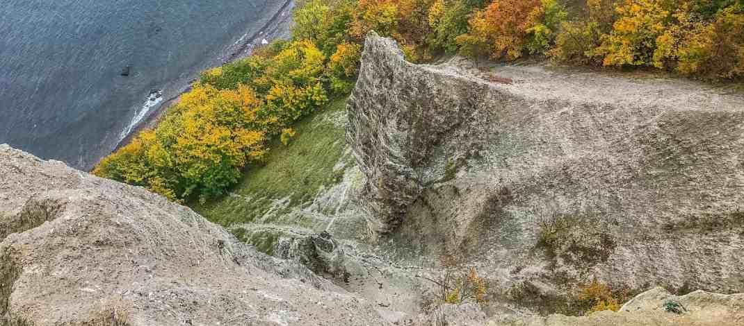 European Beech Forest Network Vilm 2017 0193.jpg - European Wilderness Society - CC NonCommercial-NoDerivates 4.0 International