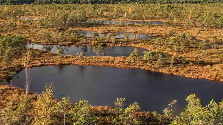Kemeru Natonal Park - 7739.jpg - © European Wilderness Society CC BY-NC-ND 4.0