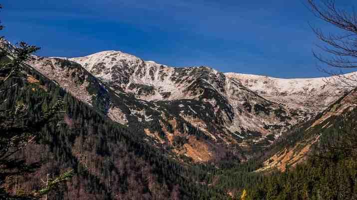Skalka Wilderness-16306.JPG - European Wilderness Society - CC NonCommercial-NoDerivates 4.0 International