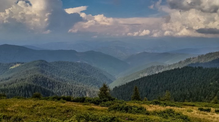 Maramarosh Wilderness © All rights reserved