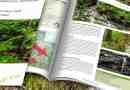 Uholka_Shyrokyy_Luh_Wilderness_Brief_2200x1057.jpg - © European Wilderness Society CC BY-NC-ND 4.0