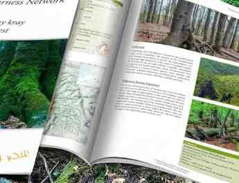 Zaccharovanyy_kray_WILDForest_Brief_2200x1057.jpg - European Wilderness Society - CC NonCommercial-NoDerivates 4.0 International