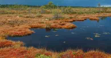 Kure-Daglari National Park--11.jpg - © European Wilderness Society CC BY-NC-ND 4.0