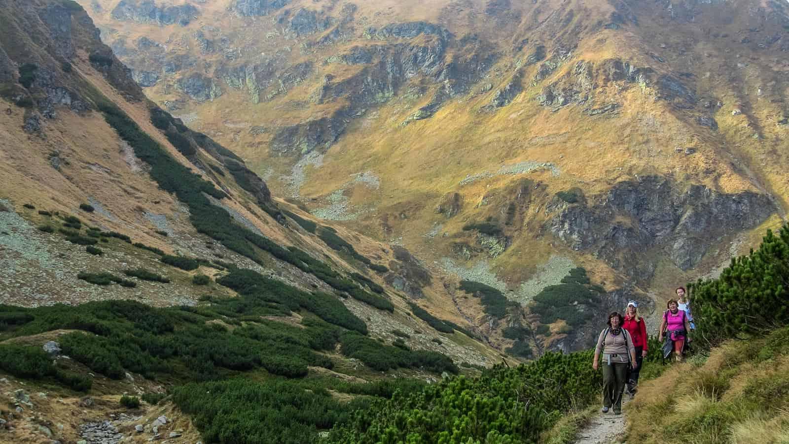 Rackova Dolina - Tatra National Park © All rights reserved