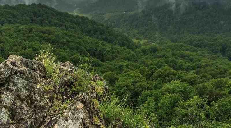 Uholka Wilderness Exchange Programme - 00048.jpg - © European Wilderness Society CC BY-NC-ND 4.0