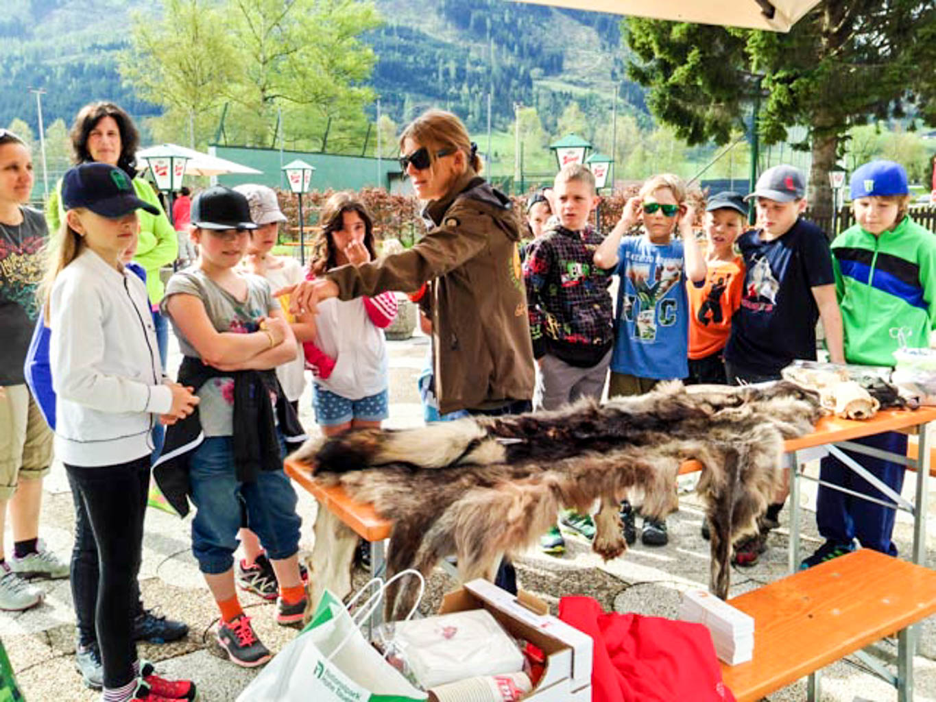 Hohe Tauern Wolf Festival School - © All rights reserved