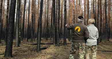 Forest Fire Treuebrietzen Brandenburg-22530.JPG - © European Wilderness Society CC BY-NC-ND 4.0