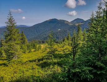 Maramarosh Wilderness Carpathian Biosphere Reserve-19846.jpg - European Wilderness Society - CC NonCommercial-NoDerivates 4.0 International