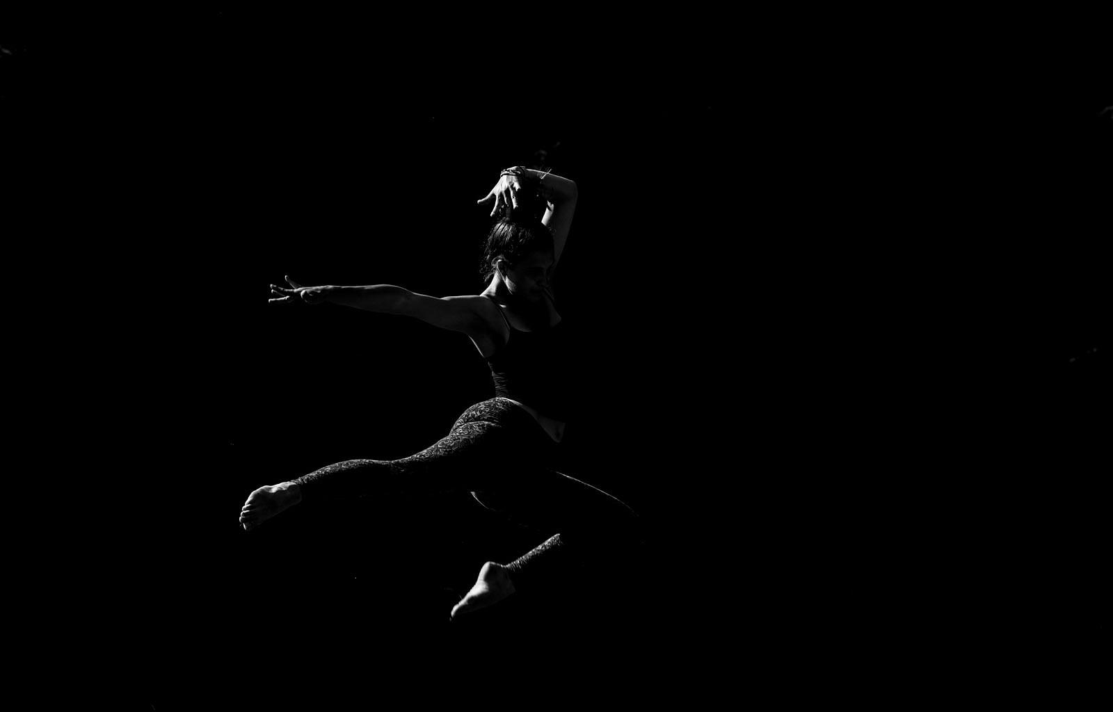 Daniel Mirlea WILDArt Ukraine © All rights reserved