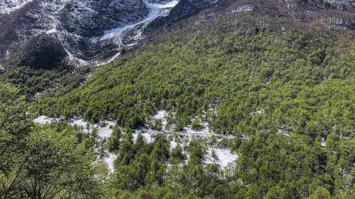 Prealpi Giulie-23211.jpg - European Wilderness Society - CC NonCommercial-NoDerivates 4.0 International