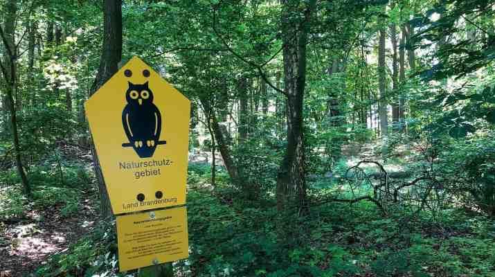 European Wilderness Society © Copyright 2019 - CC NonCommercial-NoDerivates 4.0 International
