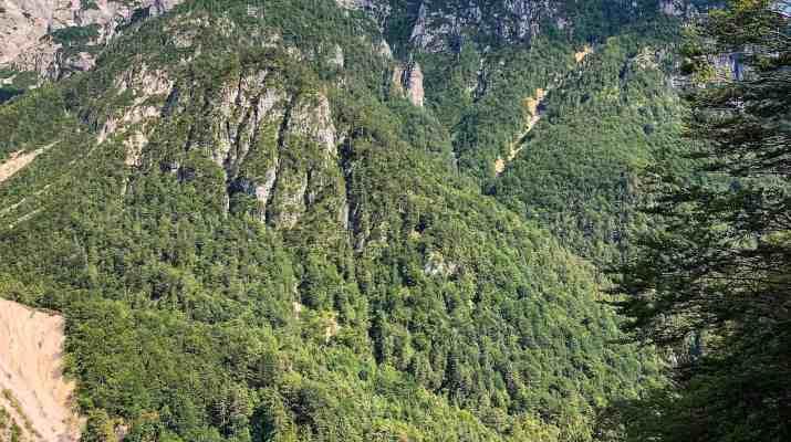 Val Alba Wilderness-25672.jpg - European Wilderness Society - CC NonCommercial-NoDerivates 4.0 International