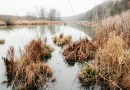 Bondarivske_Wetland -30701.jpg - © European Wilderness Society CC BY-NC-ND 4.0