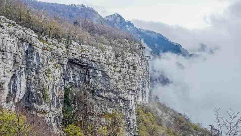 Krokar BEECH POWER Workshops Slovenia-30770.JPG - © European Wilderness Society CC BY-NC-ND 4.0