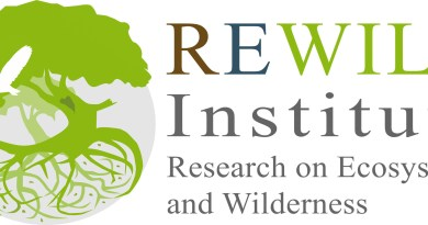 pngREWILDInstitute-Logo1.png - © European Wilderness Society CC BY-NC-ND 4.0