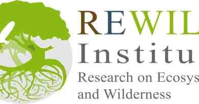 Webinar series with REWILD Institute