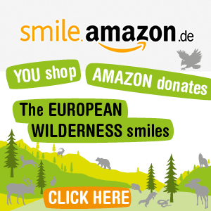 EWS_Amazon_Smile_300x300
