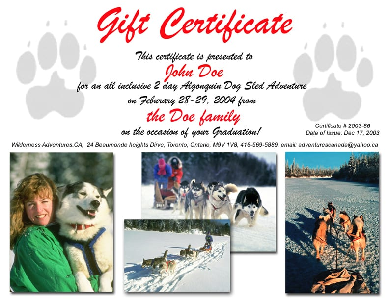 gift-certificate-dog-sled-large