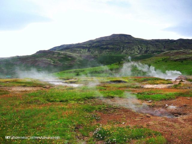 Geysir steaming fields, south coast, Suðurland, Iceland