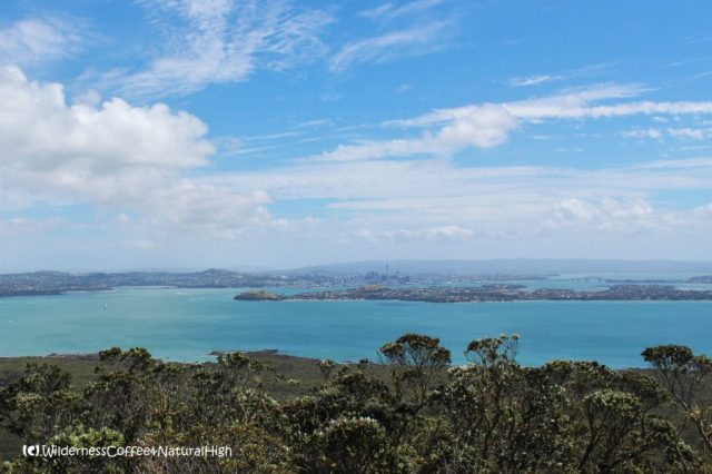 Auckland harbour, North Island, New Zealand