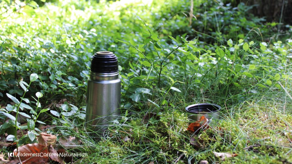 Wilderness Coffee in the forest