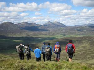 Wilderness Foundation TurnAround Project