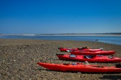Choate-Island-Paddle-And_Hike