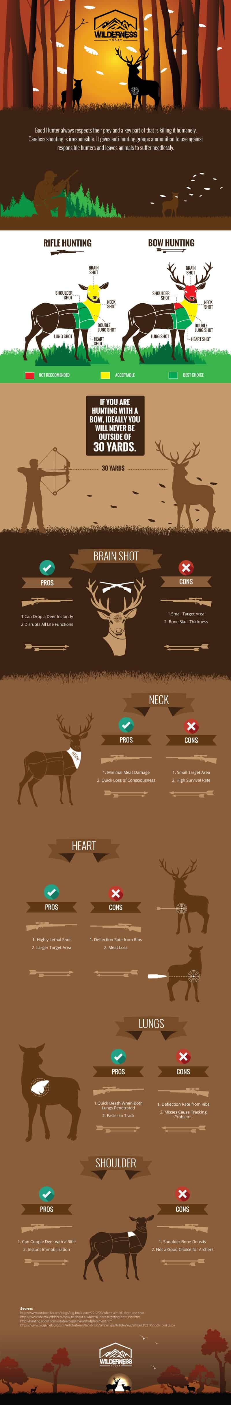 Where to Shoot a Deer - Kill Zone Infographic