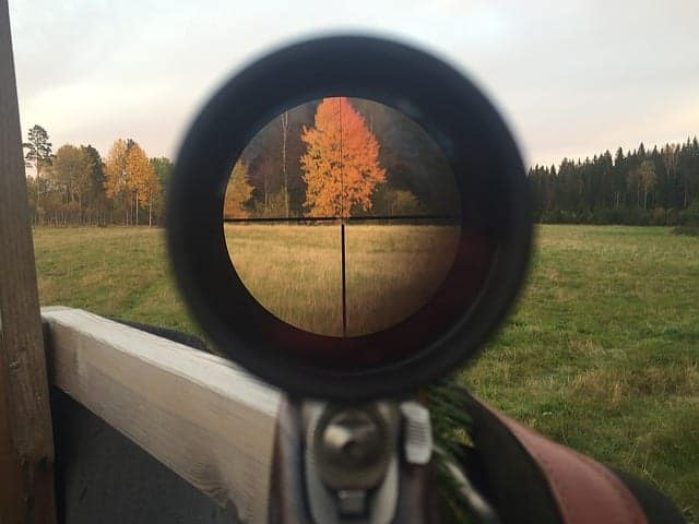 hunting-autumn-telescopic-sight