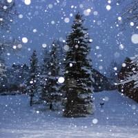 Minnesota Snow Fall December 2012