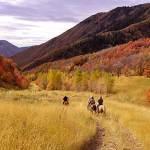 Hobble Creek Canyon
