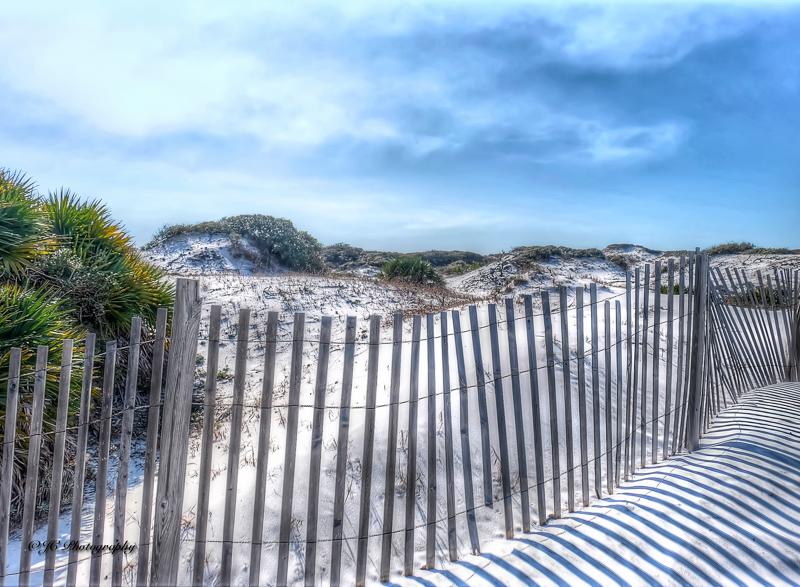 dunes fence