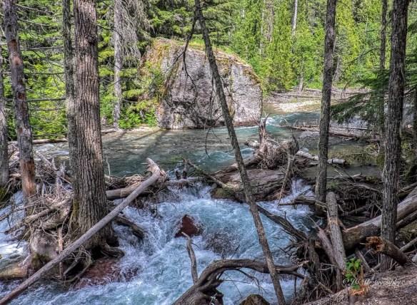 avalanche creek-9405-