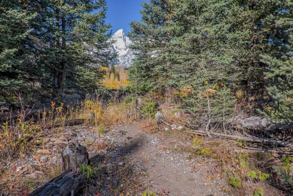 10-trail-out-7074tif