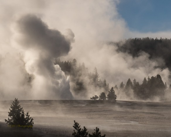 13-later-great-fountain-geyser-8867