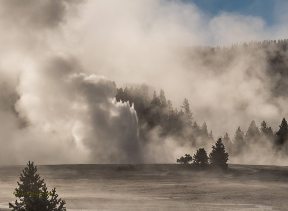 13-later-great-fountain-geyser-8875