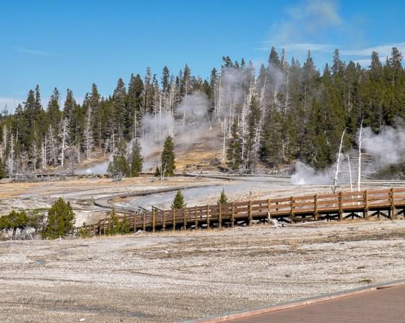 grand-geyser-9286